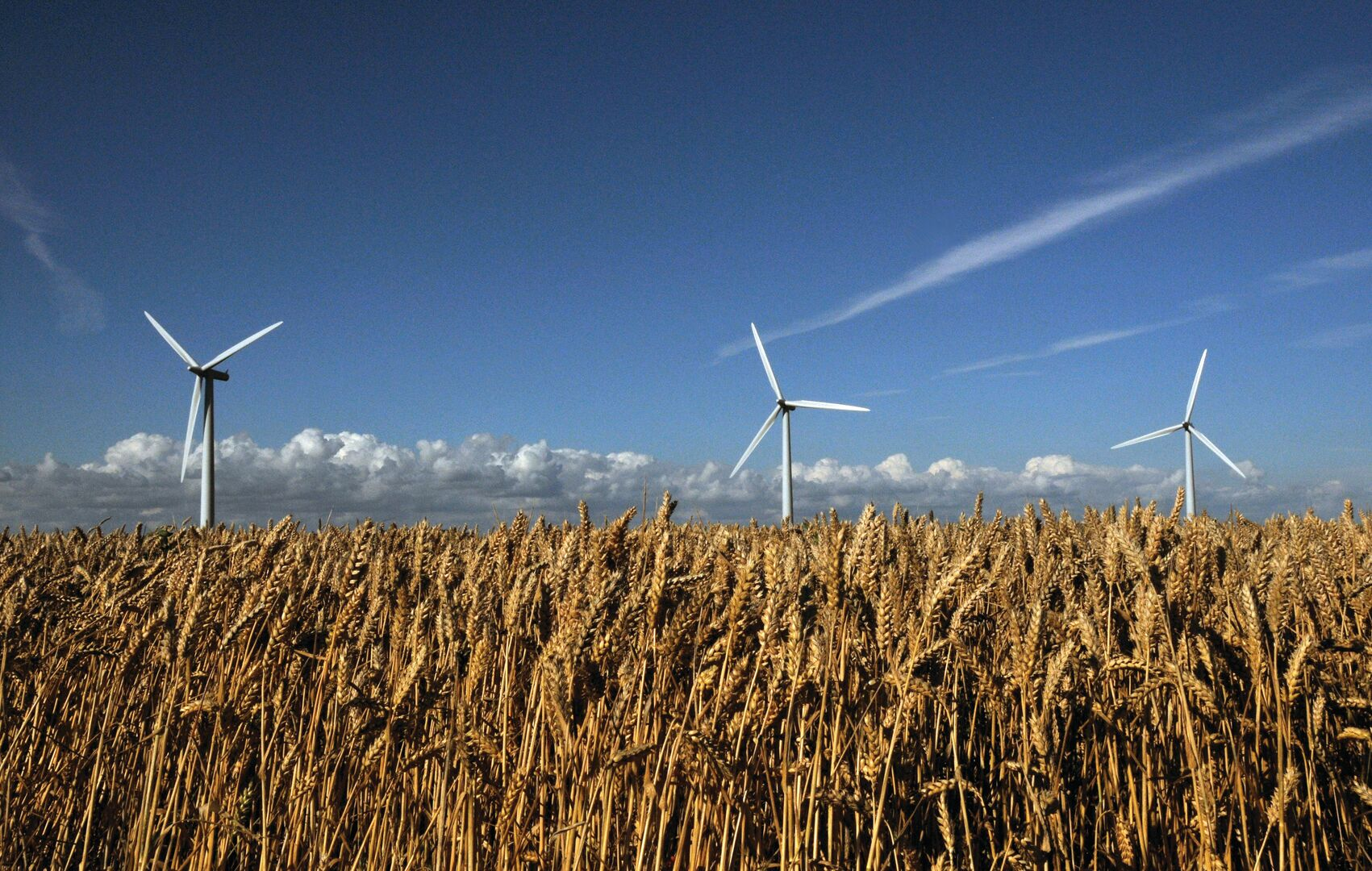 Wind turbines against a blue sky