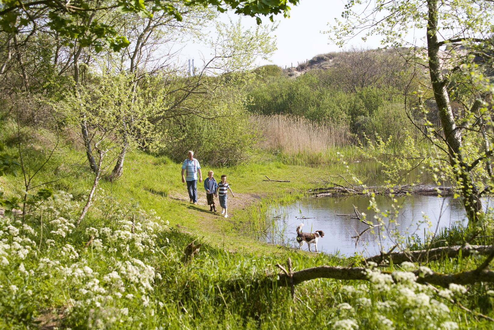 Man, two kids and a dog walking along a pond in a woodland area